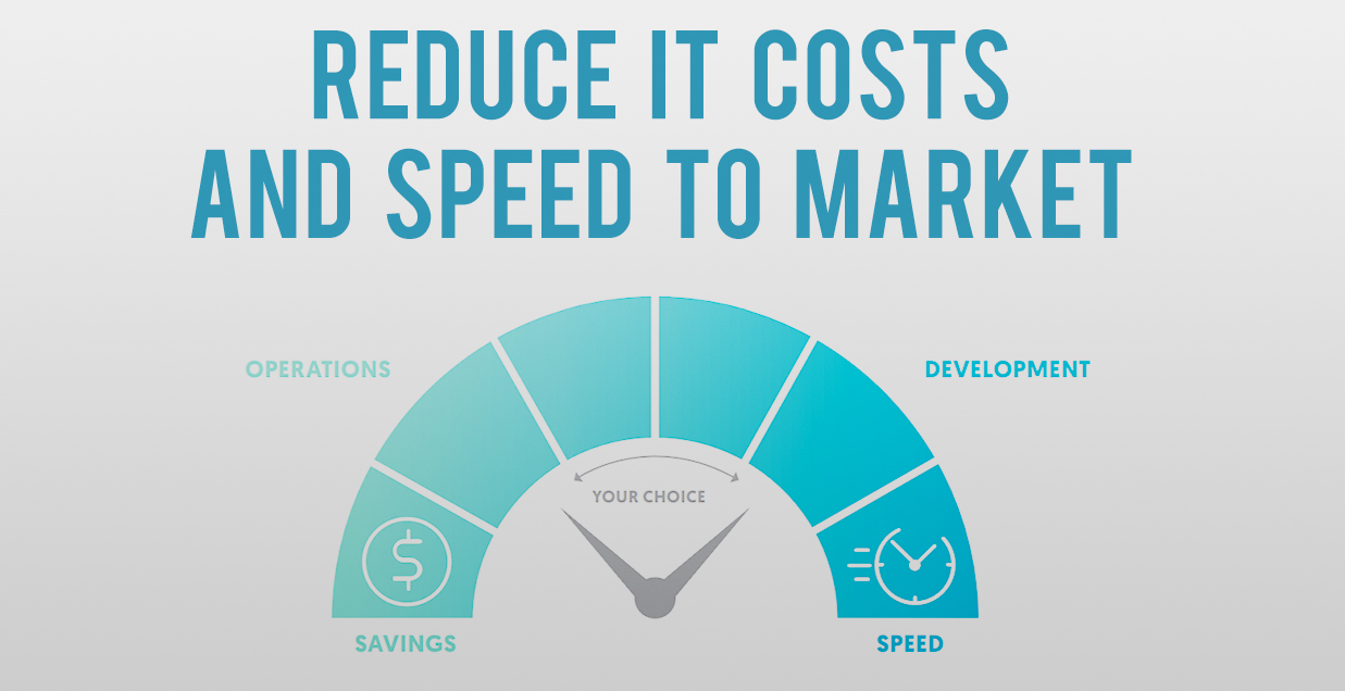 Reduce IT Costs and Speed to Market
